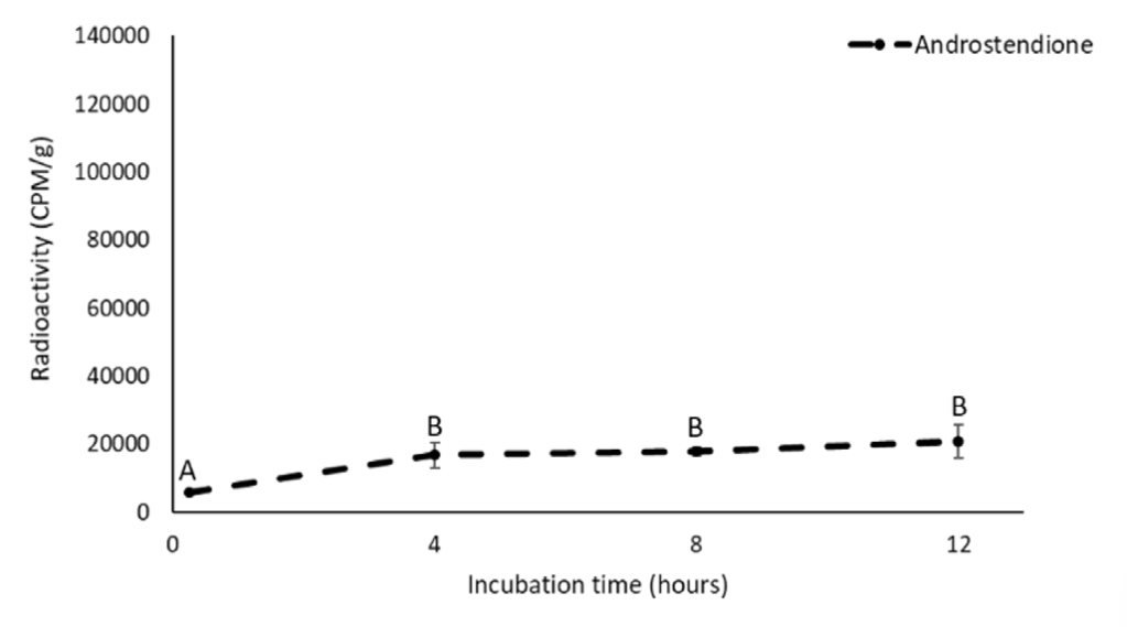 A data figure that shows the amount of radiolabeled androstenedione over time. Axes are the same as in Figure 1. The figure shows that radiolabeled androstenedione is low at zero hours (just over zero CPM/g) and significantly increases after four hours of incubation (20,000 CPM/g). The amount of androstenedione stays relatively constant after 4 hours of incubation.