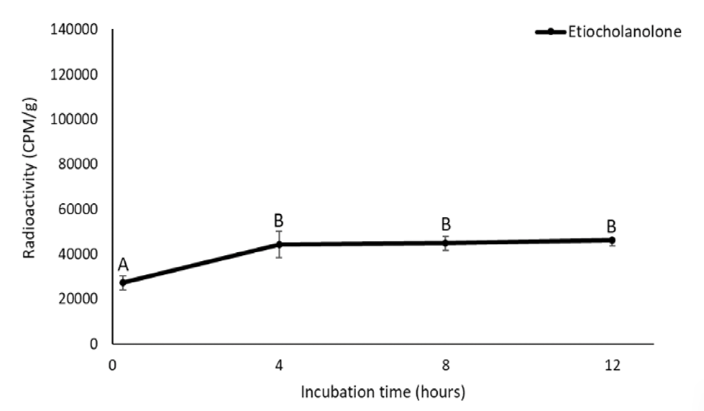 A data figure that shows the amount of radiolabeled etiocholanolone over time. Axes are the same as in Figure 1. The figure shows that radiolabeled etiocholanolone is low at zero hours (25,000 CPM/g) and significantly increases after four hours of incubation (45,000 CPM/g). Similar to the other metabolite, the amount of etiocholanolone stays relatively constant after 4 hours of incubation.