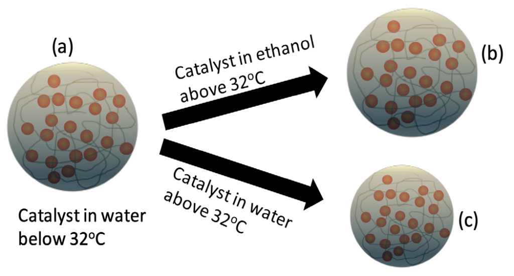 A. Many gold orbs are contained in a circle. The temperature is below 32 degrees Celsius. An arrow points to a catalyst in ethanol above 32 degrees Celsius (B). In this instance, the circle looks similar to the circle of origin. Another arrow points from A to a catalyst in water above 32 degrees Celsius (C). In this instance, the circle is smaller, and the gold orbs are more compact.