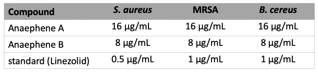 A table of MIC values for the chemicals tested. Anaephene A has an MIC of 16 micrograms/mL for each bacteria. Anaephene B has an MIC of 8 micrograms/mL for each bacteria. Linezolid has an MIC value of 0.5-1 micrograms/mL for each bacteria.