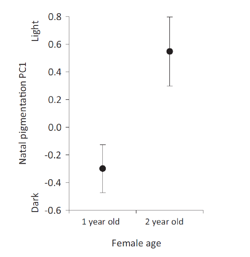 A data figure that shows the scale of pigmentations from light to dark. Zero, in the center of the y-axis, is neutral. Average pigmentation for one year old females is -0.2 toward the dark scale. Average pigmentation for one year old females is 0.6 toward the light scale.