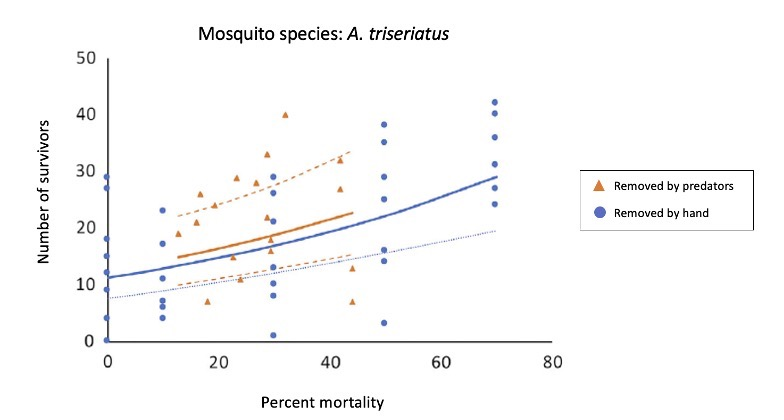 A data figure that shows the number of A. triseriatus mosquitos that survived the experiment. In the experiment, more mosquitos were removed by hand than when predators were added into the container. Regardless, this figure shows that removing individuals increased the population size.