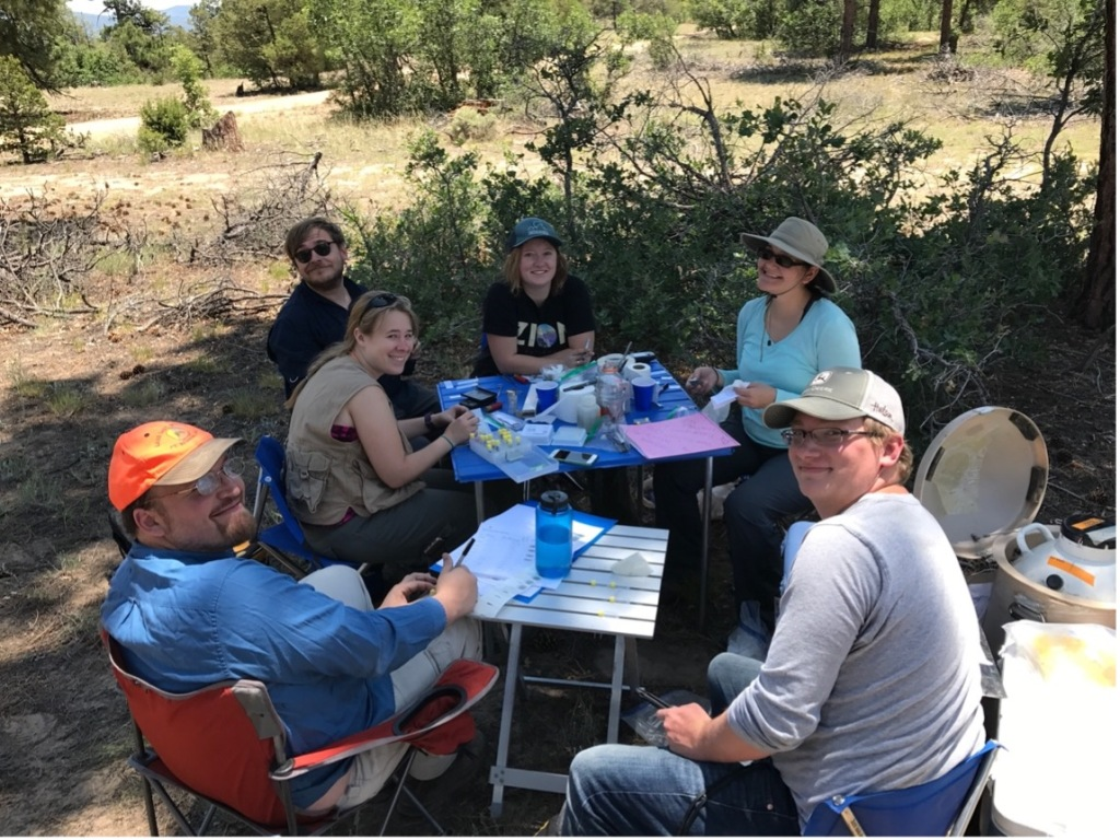 A picture of six people sitting around two small tables in the piñon-juniper woodlands. There are test tubes on the table and a nitrogen tank in the background.
